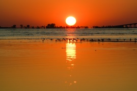 Beachgoers can watch the sunset in Fort Myers over Sanibel form the Bunche Beach Preserve.