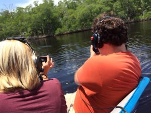 Airboat rides in the Everglades give an up-close look at alligators.