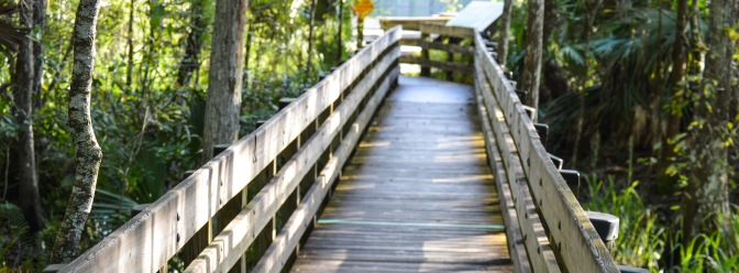 Six Mile Slough Boardwalk Closing Temporarily