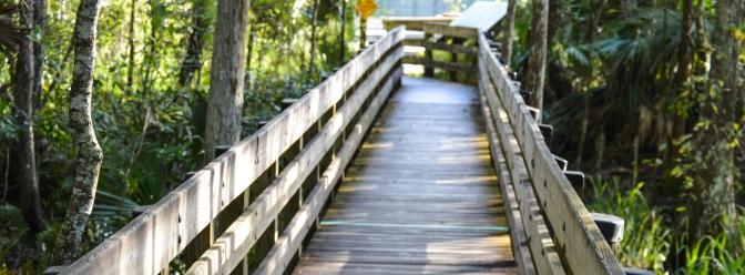 Six Mile Slough Boardwalk Closing Temporarily